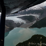 Riggs Glacier emptying into the Muir Inlet